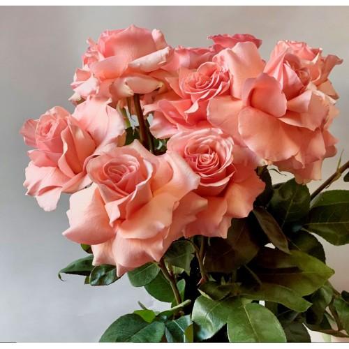 Букет из французских роз (лососевые) - фото