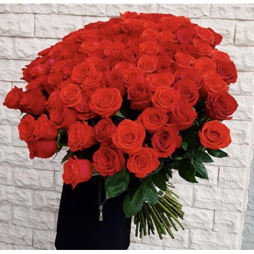 Роза красная 70-80 см - фото