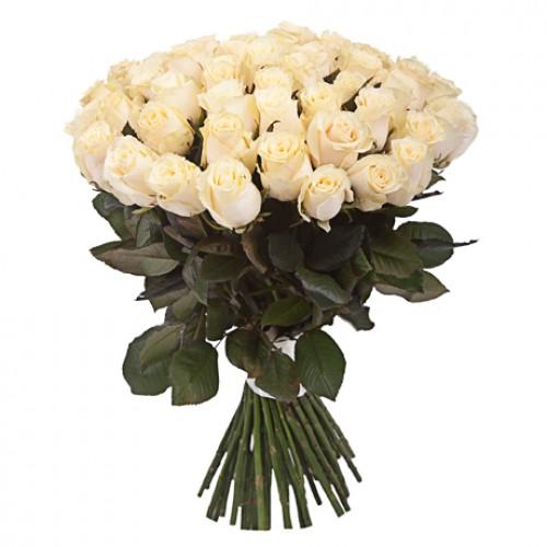 51 белая роза - фото