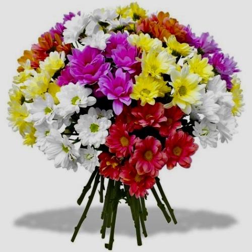 Букет из 15 хризантем (цвет - микс) - фото
